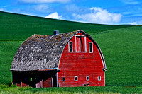 Palouse Red
